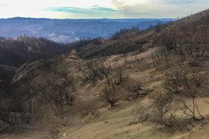 Burn scar area of 2017 Mendocino County fires.