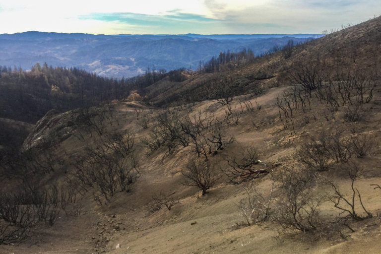 Burn scar area of 2017 Mendocino County fires.